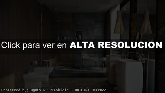 baño lujoso en madera